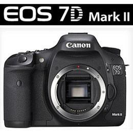 CANON 7D Mark II單機身 單眼相機