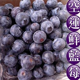 空運來台★加州鮮藍莓(10盒裝/箱)