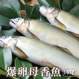 宜蘭冷泉爆卵母香魚10入組