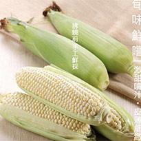 白美人牛奶水果玉米(8支)組