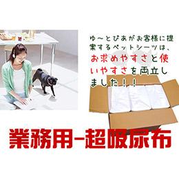 【寵物尿布】限量提供超吸尿布/4包(200片)