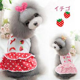 小清新草莓蝴蝶結蛋糕裙