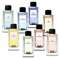 D&G Fragrance Anthology 系列100ml 淡香水