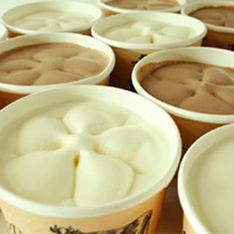 【飛牛牧場】純鮮冰淇淋(15入)