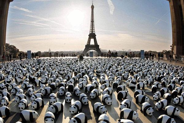 紙熊貓在巴黎