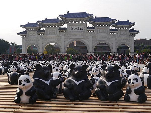 紙熊貓台灣黑熊版