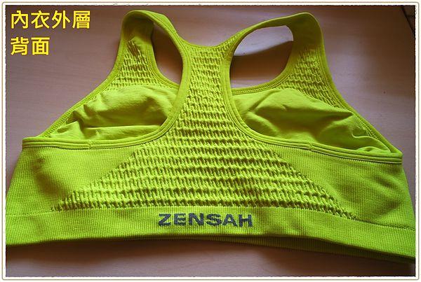 無縫運動內衣,運動內衣,無胸墊內衣,征沙Zensah 無縫運動內衣